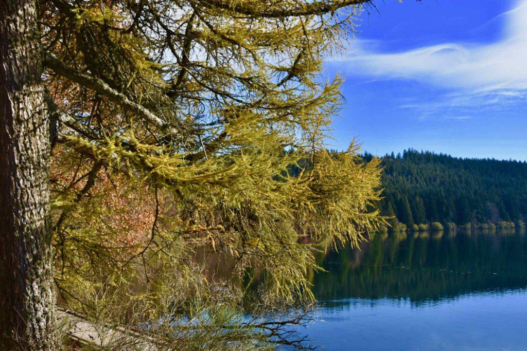 Le Lac du Bouchet à découvrir àn vélo électrique