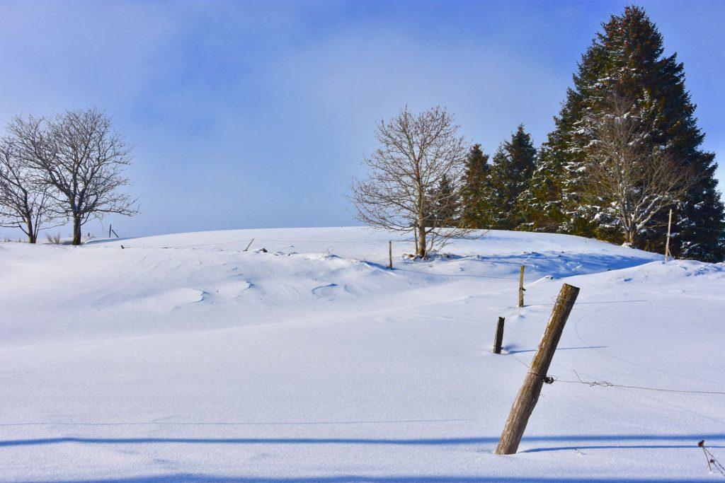 La neige version authentique