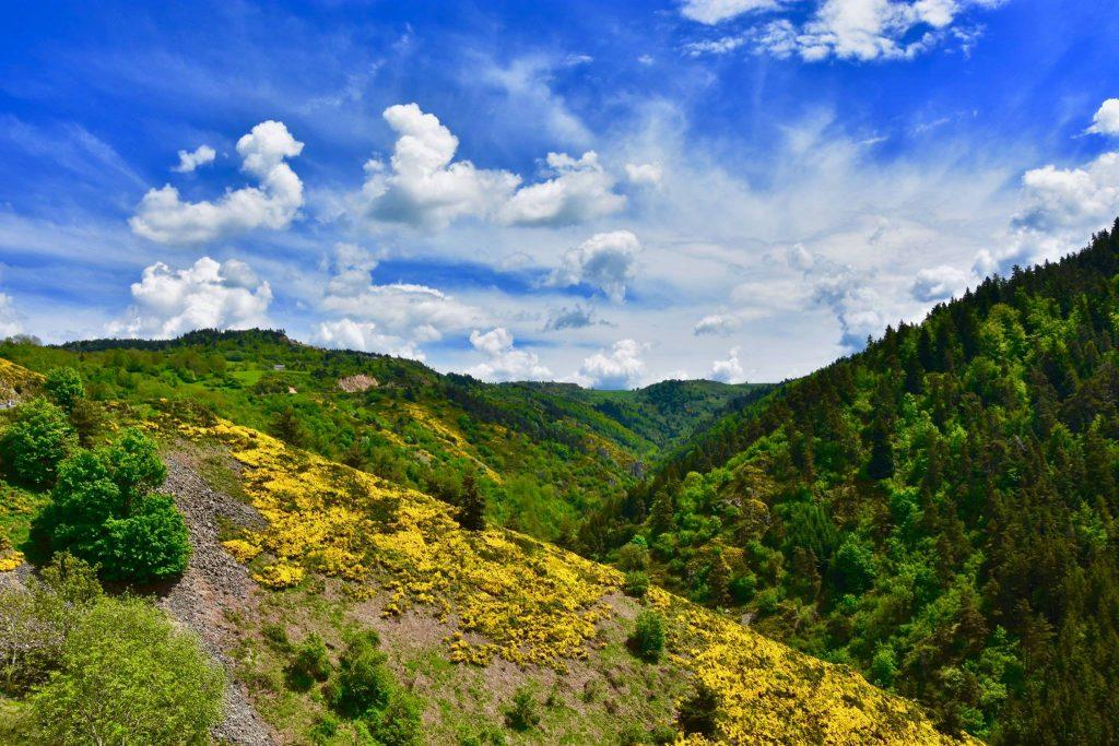 La vallée de l'Aubépin